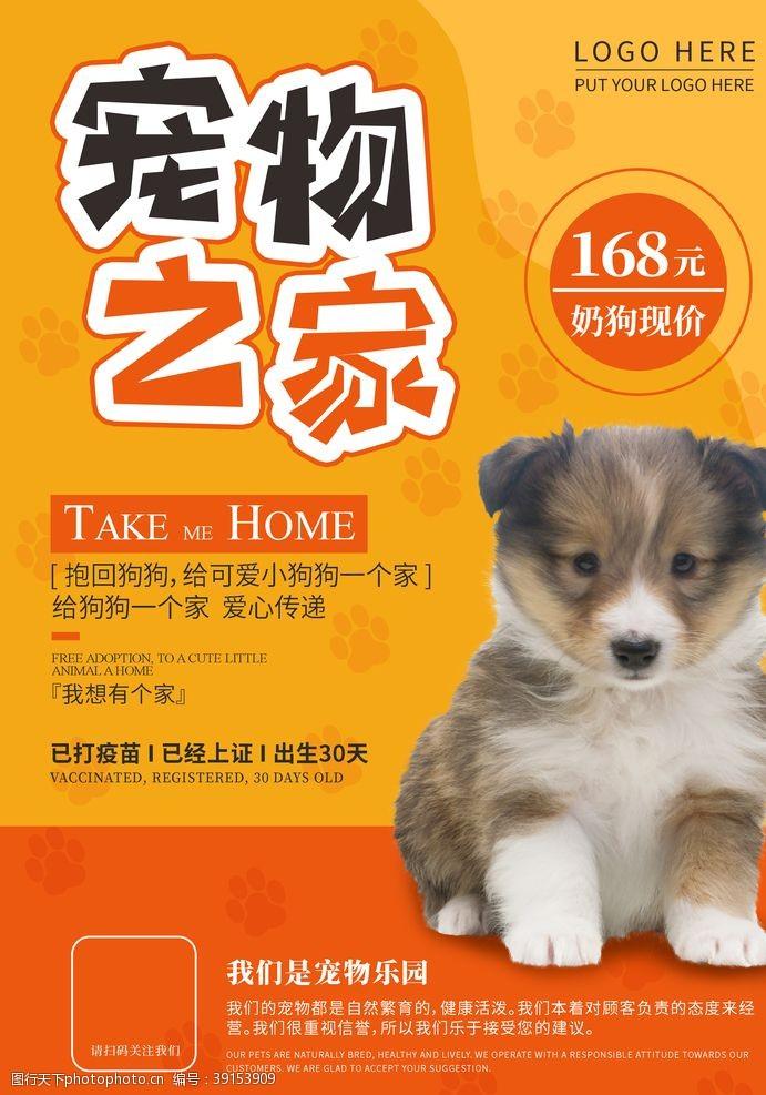 动物诊所 宠物图片