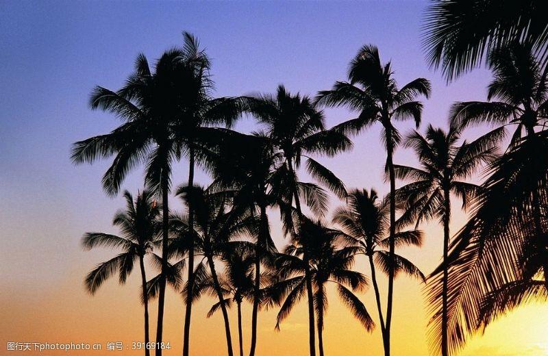 沙滩椅 美丽的海边风景图片