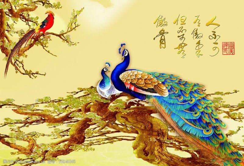 巨幅 孔雀图图片