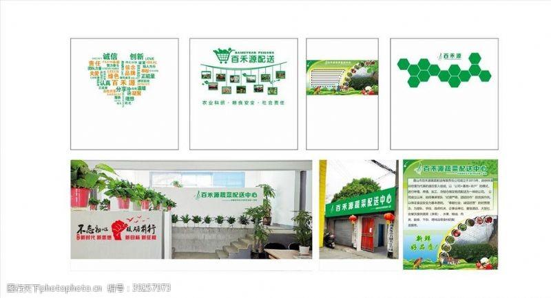 展示区蔬菜文化图片