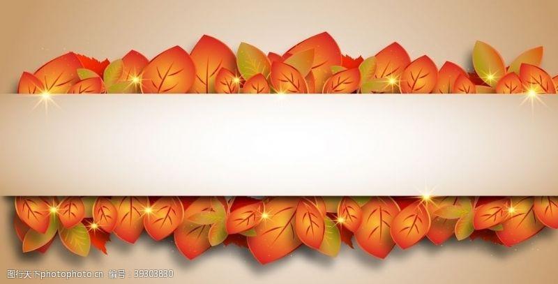 立秋秋分秋叶边框图片