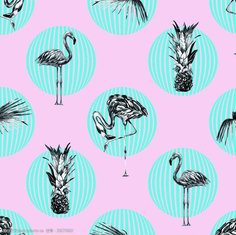 粉色火烈鸟火烈鸟图片