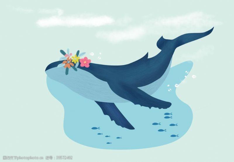 北欧素材手绘鲸鱼图片