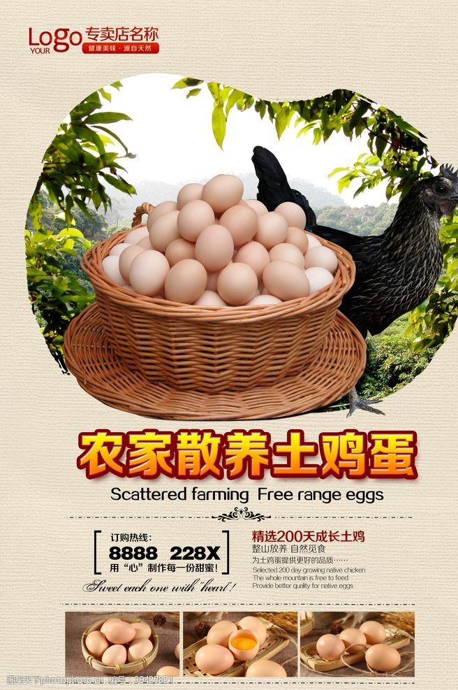 鸡蛋海报土鸡蛋图片