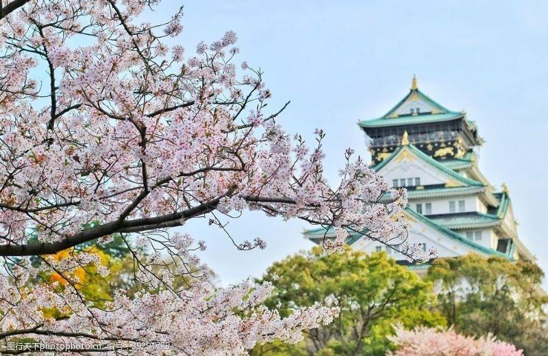 富士山古建筑与花图片