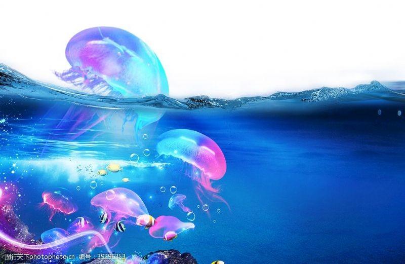 水草海洋节图片