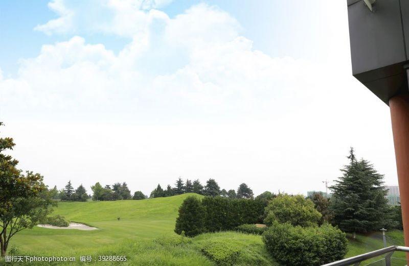 高尔夫球场一角图片
