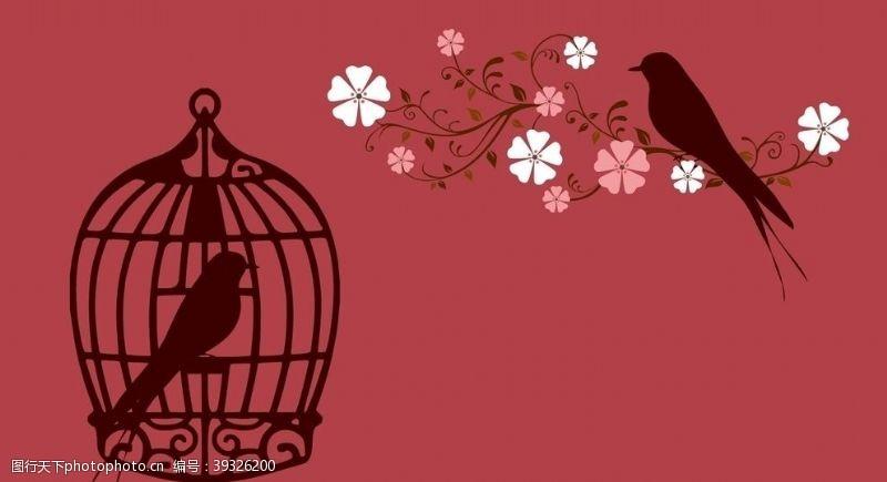 爱情鸟情侣鸟图片