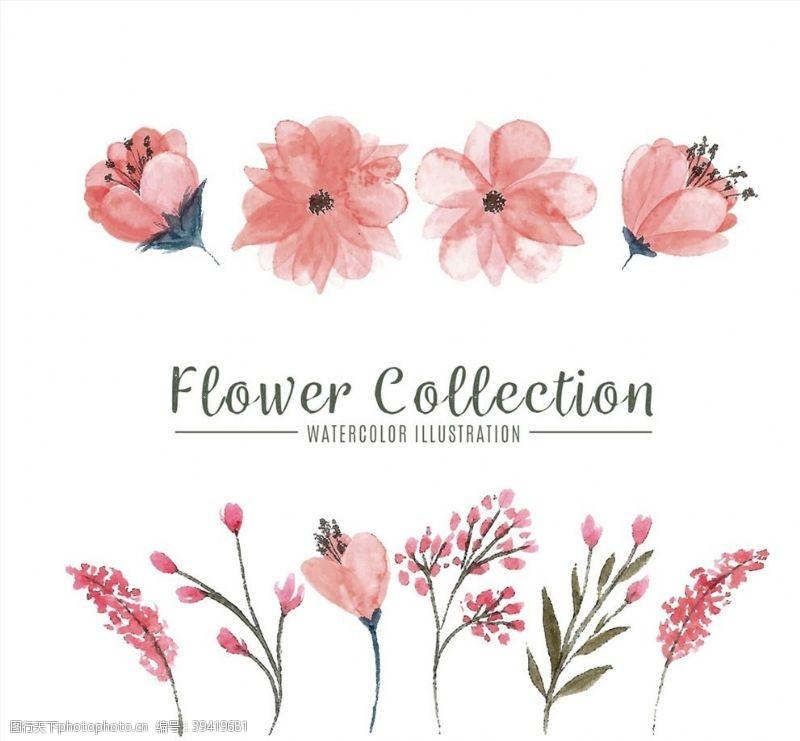 水彩绘粉色花卉图片