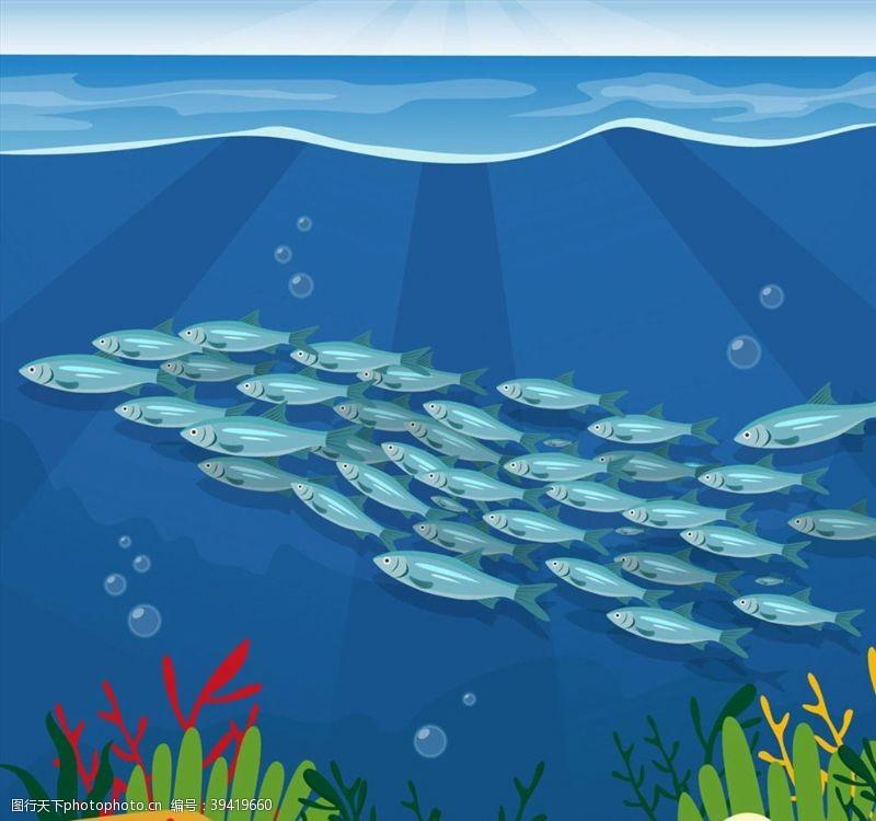 水草美丽海底银色鱼群图片