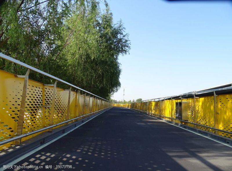 绿色运动长廊桥图片