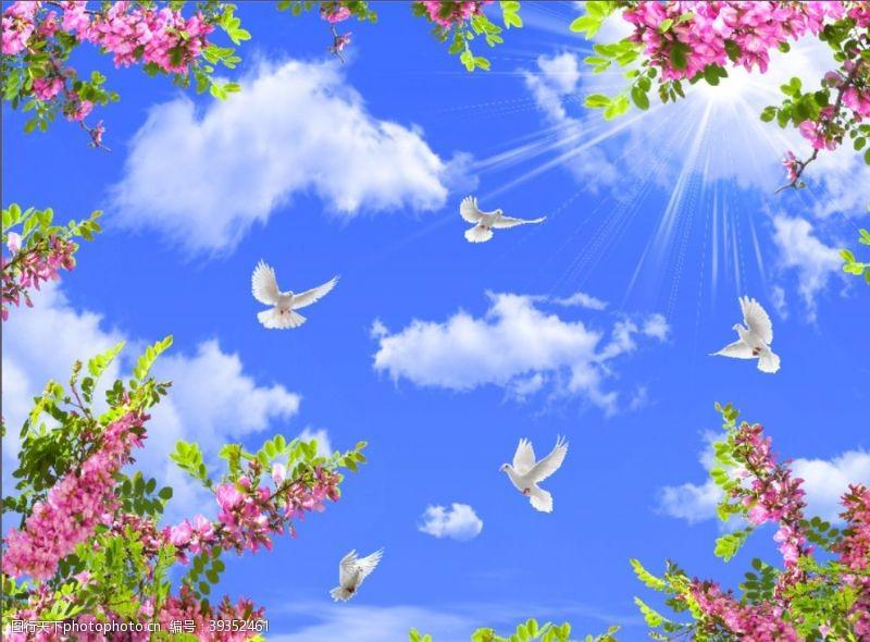 蓝天白云绿叶鸽子图片