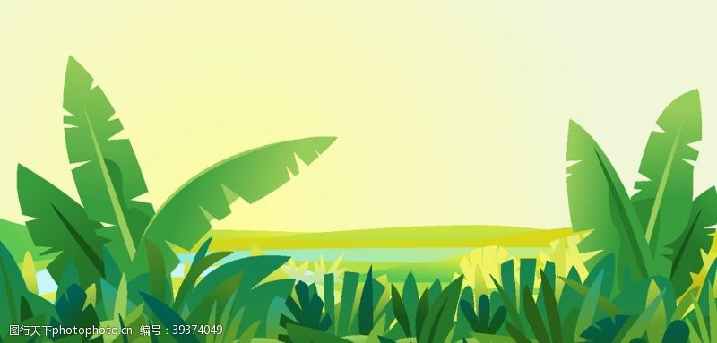 美丽背景芭蕉树背景图片