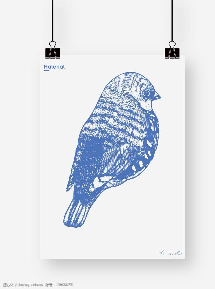 鸽子麻雀图片