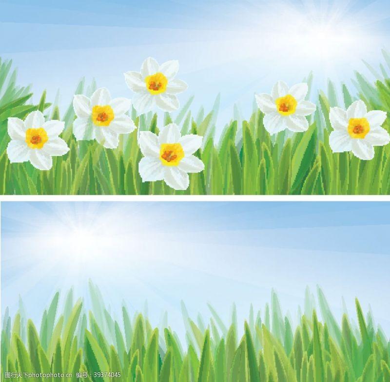 美丽背景草地蓝天图片