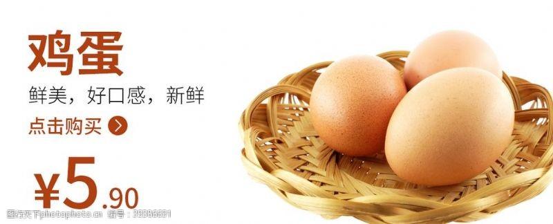 鸡蛋鸡蛋海报食品类图片