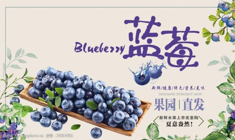 包装设计蓝莓图片