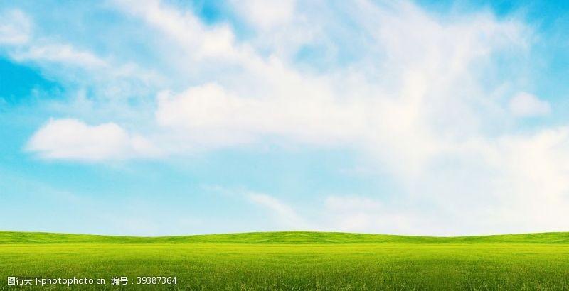 草坪蓝天白云大草原图片
