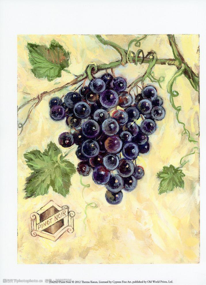 美式葡萄水果装饰画图片