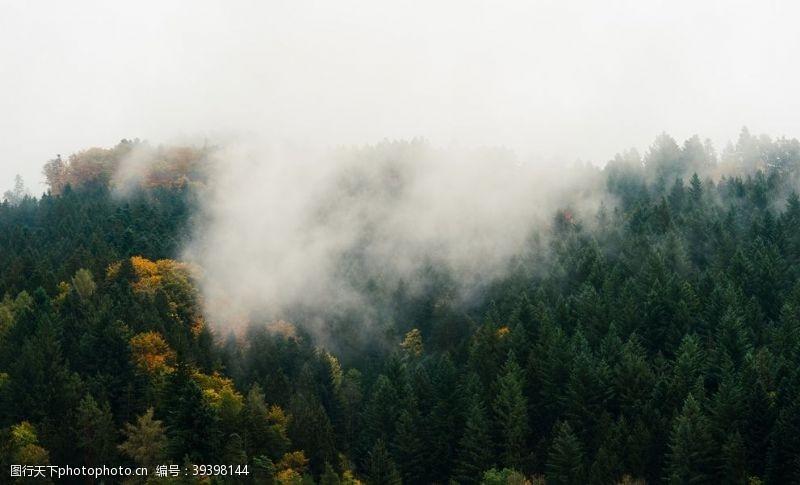山脉山林图片