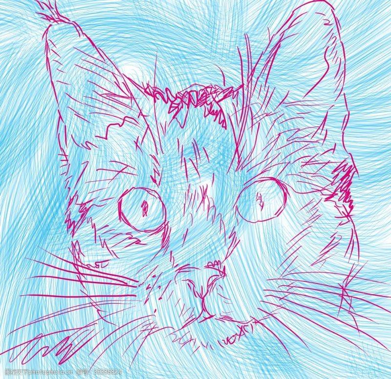 插画手绘猫咪图片