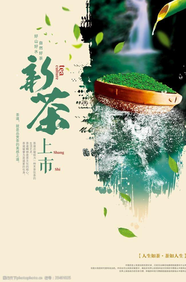 国茶文化新茶图片