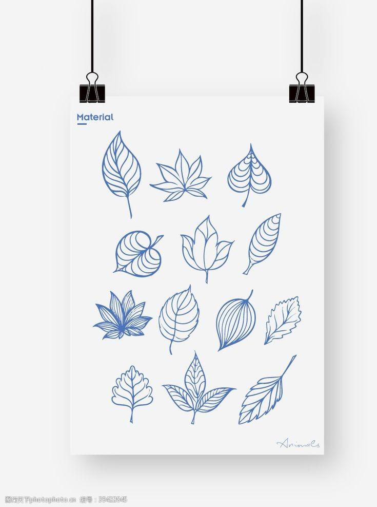 枫叶叶子图片