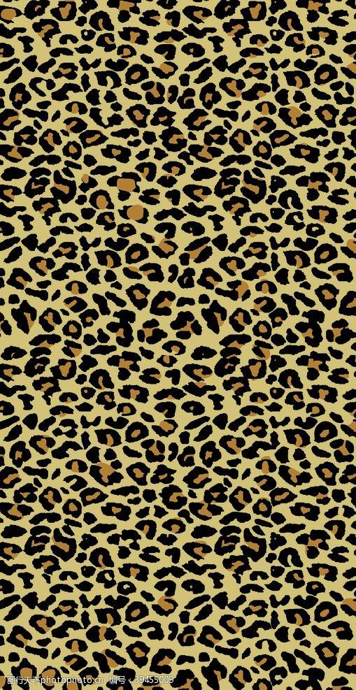 豹纹女装斑马纹图片