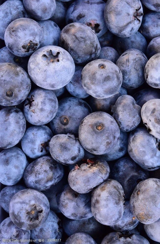 产品蓝莓图片