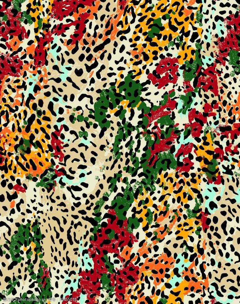 150dpi豹纹女装斑马纹图片