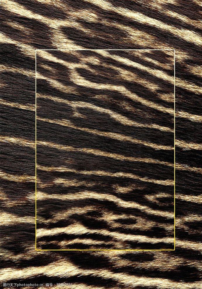 纹理高清动物毛发背景JPG图片