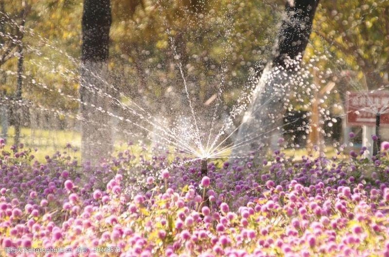浇灌花圃灌溉图片