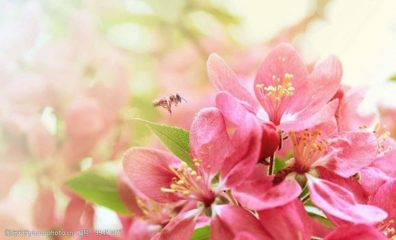 自然景观拍摄素材图片