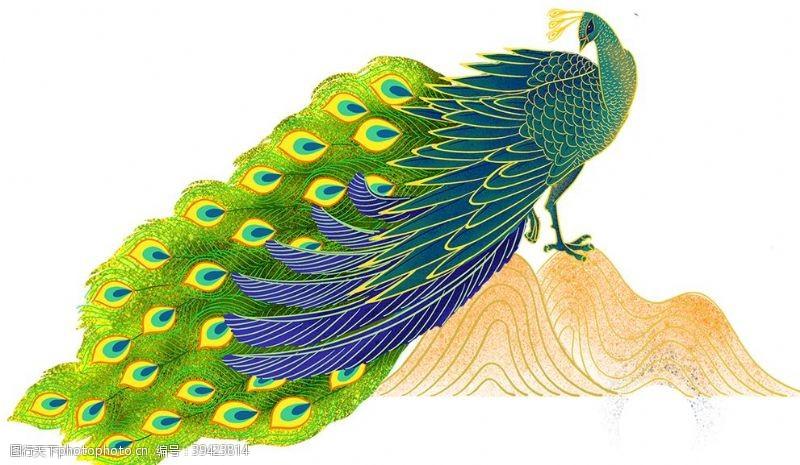 鸟类漂亮的手绘孔雀图片