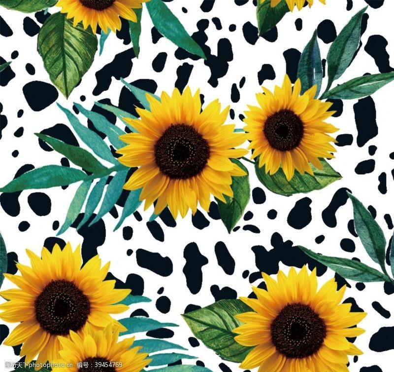 印花图案向日葵图片