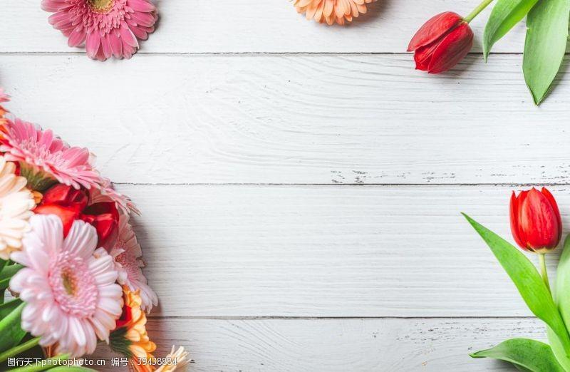 花丛鲜花背景图片