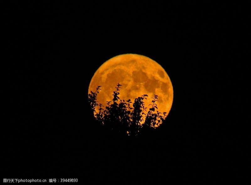 夜色月亮图片