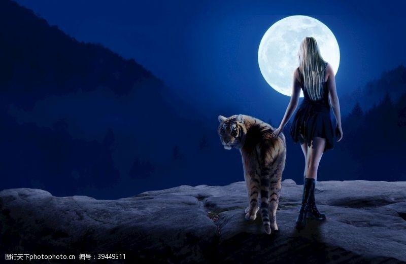 树木月光下的老虎图片