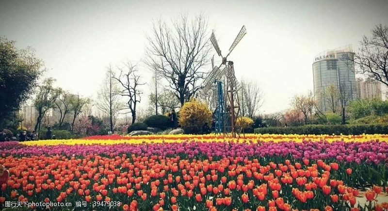 风车花园图片