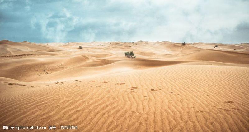 自然风光沙漠图片