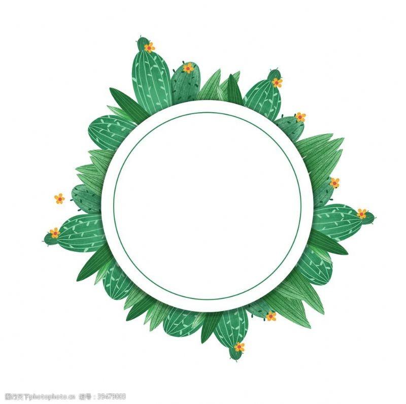 分层仙人掌花环图片