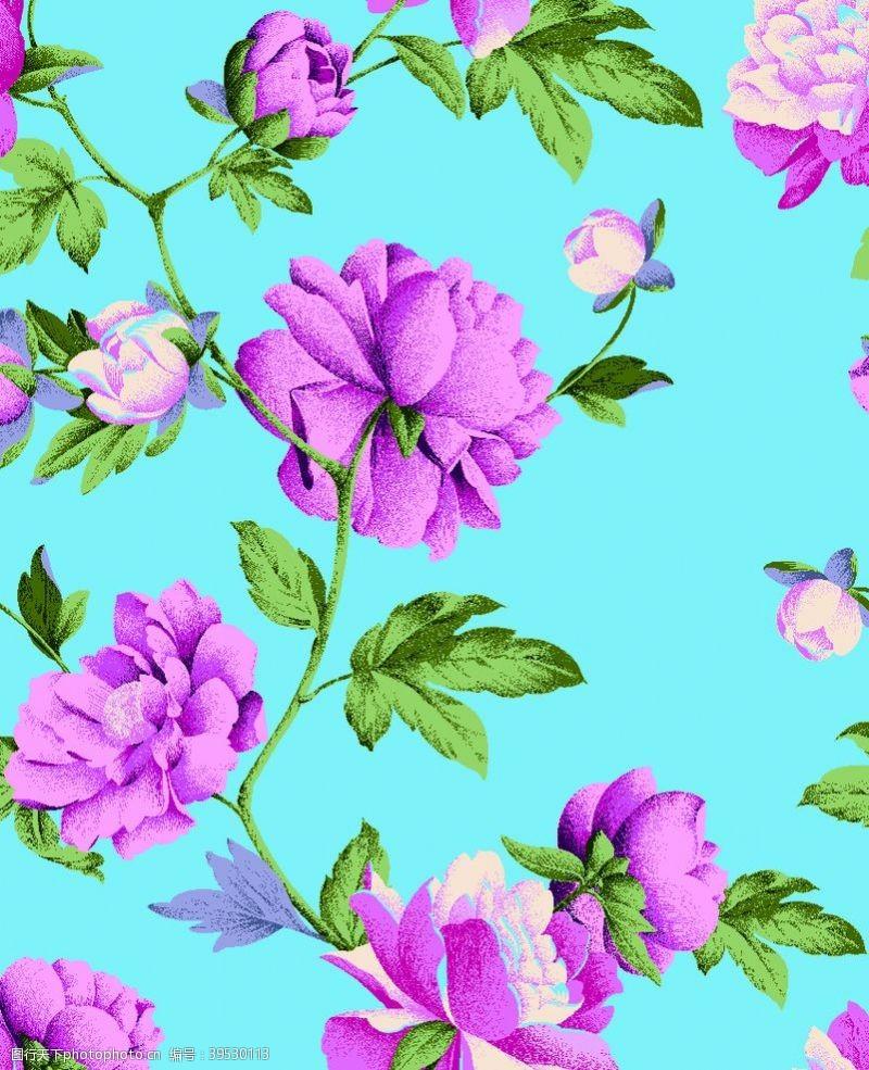 花型大朵牡丹玫瑰月季花图片