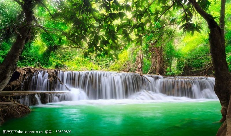 山水画瀑布树林背景墙图片