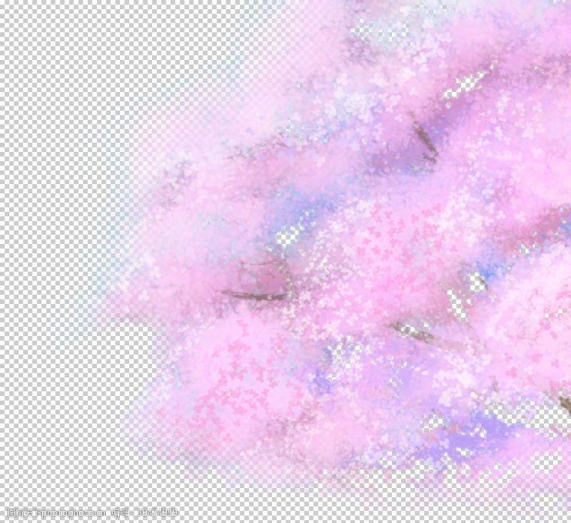樱花展架樱花素材图片