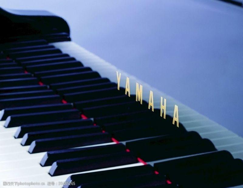 键盘乐器图片