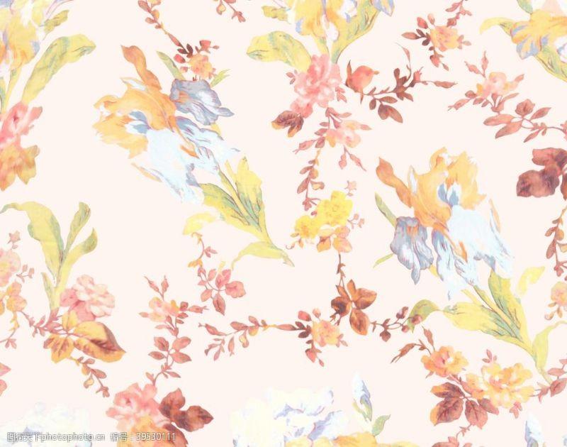 花型秋天抽象花卉图片