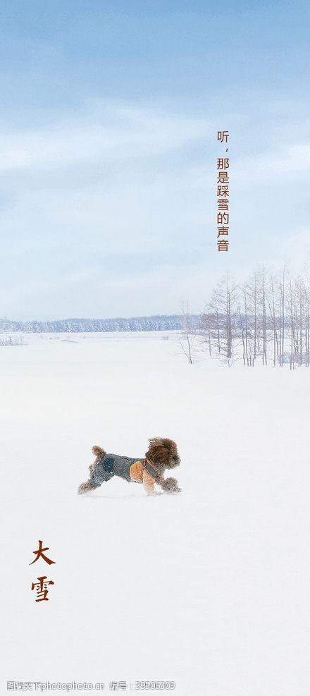 地产大雪节气海报图片