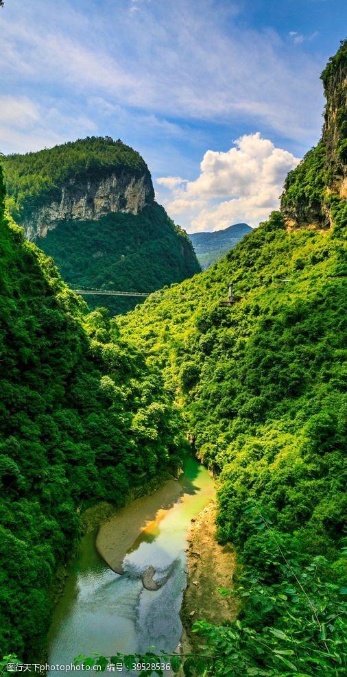 树林恩施大峡谷景点图片