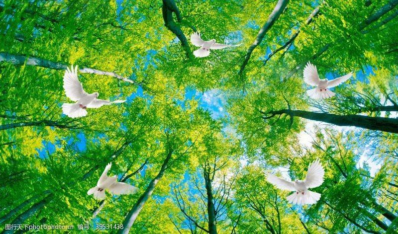 花鸟画树林玄关图吊顶图片
