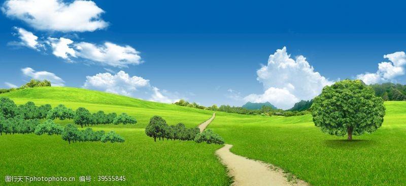 自然风蓝天白云草地图片
